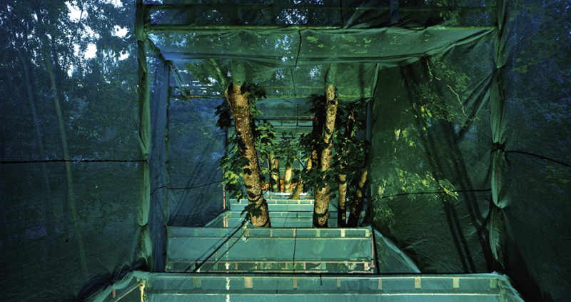 Garden with a view – inside view Villa Roosa installation in Orimattila 2010,