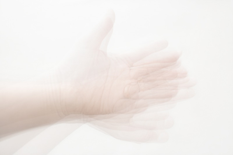 My Hand as an Idealization of the Hand, 2012