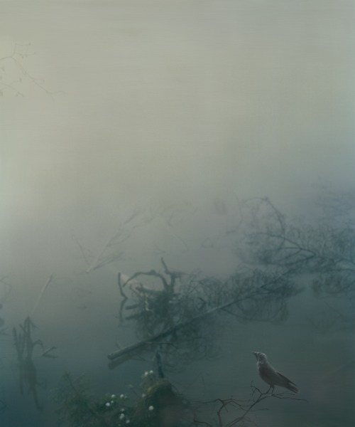 Untitled (Belomor Canal), 2010