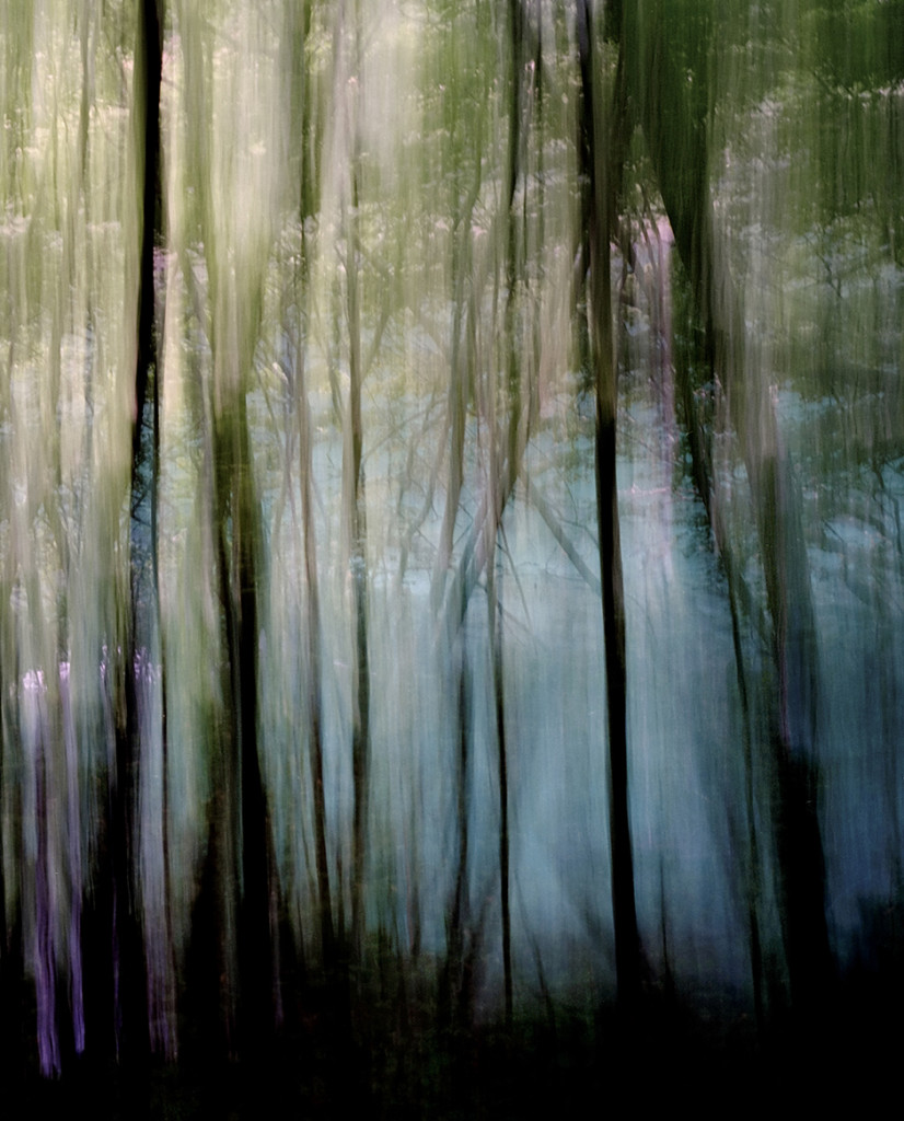 """Reflected Lake 4"", 2008"
