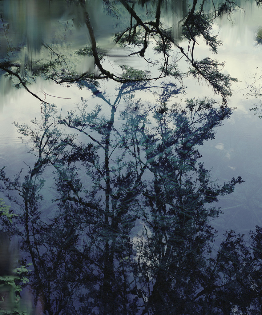 Untitled (Lake 5), 2010