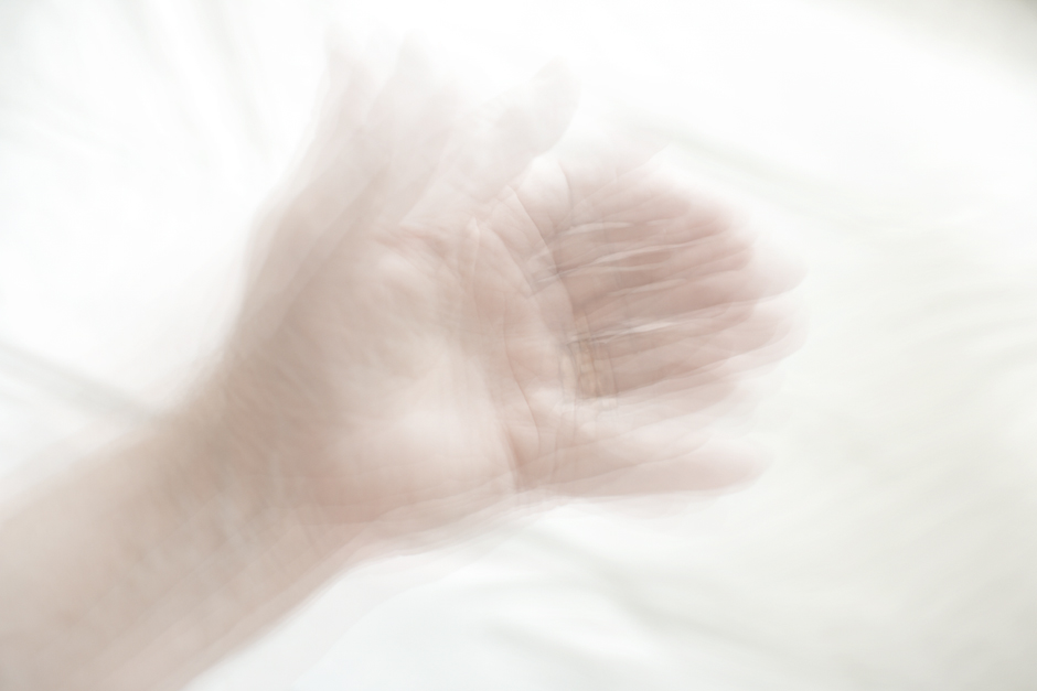 My Father's Hand as My Hand, 2012