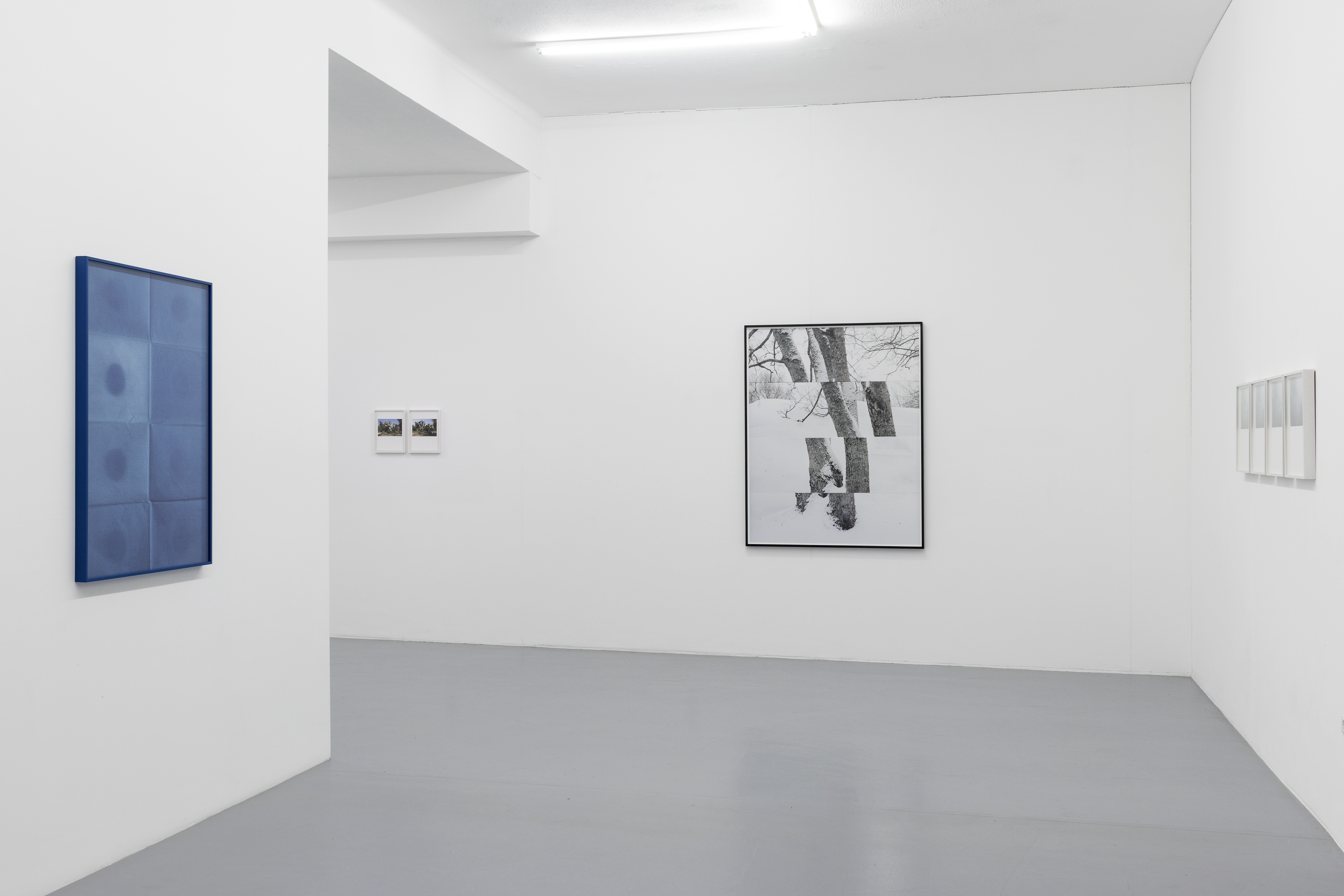 Installation View at 3+1 Gallery Lisbon, Portugal 2019